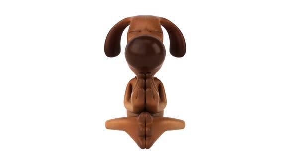 Thumbnail for Zen dog