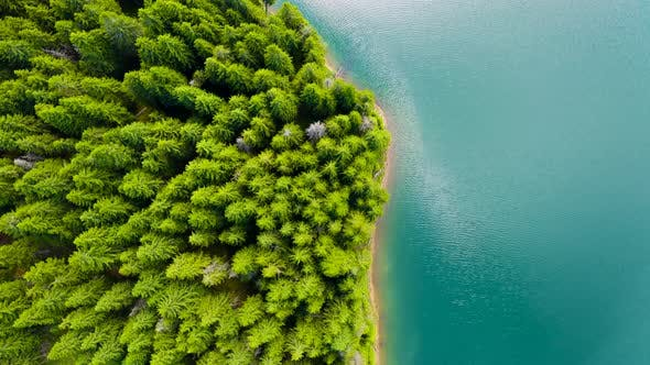 Thumbnail for Top view of blue lake and green forests on a sunny summer day. Aerial view of a forest lake.