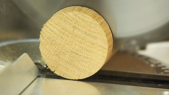 Cover Image for Sawing Wood