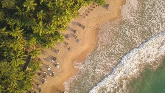 Thumbnail for Romantic Sunset on a Tropical Beach with Palm Trees. Sri Lanka, Drone Footage