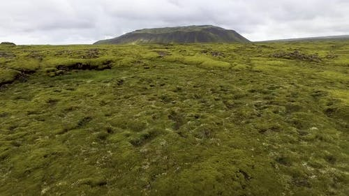 Aerial View of Mossy Lava Field in Iceland