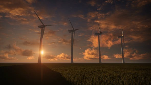 Thumbnail for Wind Farm Sunset