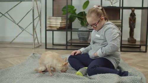 Special Needs Girl Training Chihuahua Dog Tricks