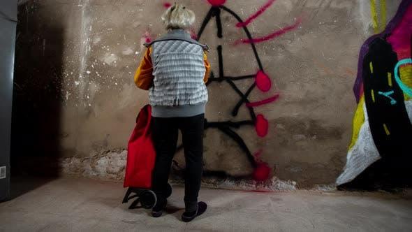 Thumbnail for Grandma Graffiti Artist
