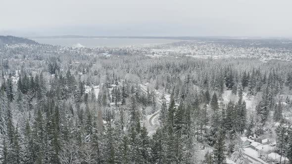 Thumbnail for Beautiful Aerial Winter View Of Snowy Town Of Bellingham Wa In Pacific Northwest