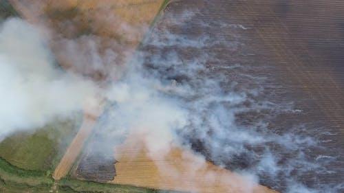 Burning Stubble on Large Fields