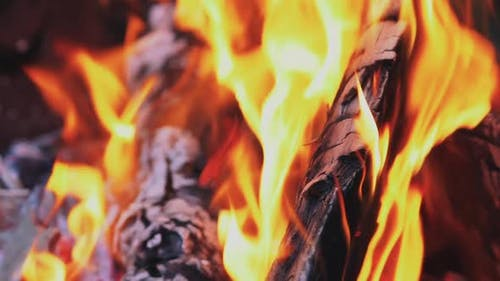 Spurts of Flame and Live Coals