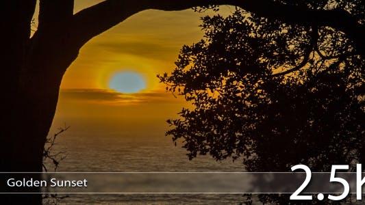 Thumbnail for Golden Sunset