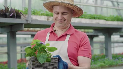 Portrait of Confident Caucasian Biologist Examining Flowers in Box and Smiling. Mid-adult Man in