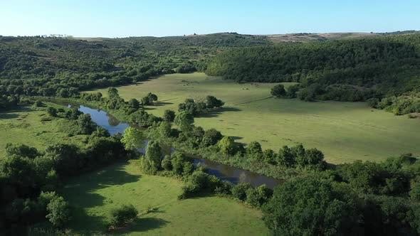 Thumbnail for River Forest And Cloud Shadows Aerial View