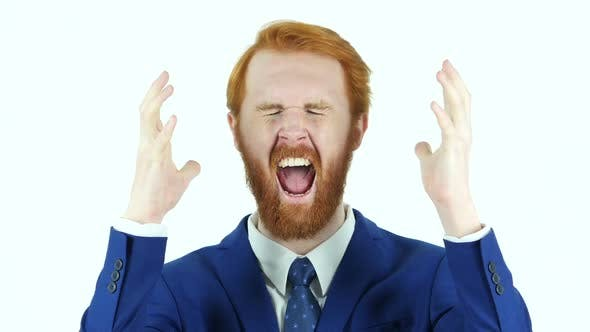 Cover Image for Screaming Upset Businessman