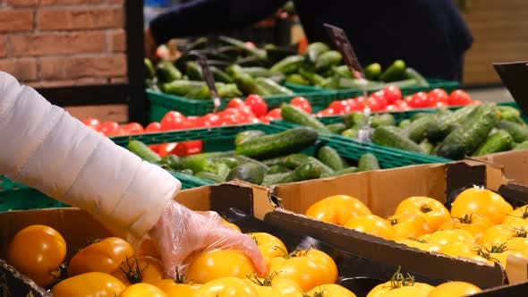 Woman chooses vegetables from boxes in the supermarket. Ripe juicy vegetables.