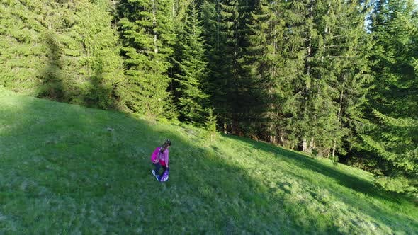 Cover Image for Aerial Shot, Family Walking Along, Spring Day in Forest