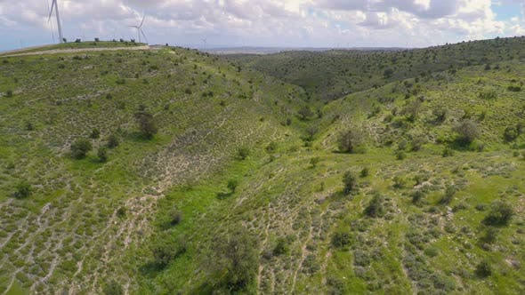 Thumbnail for Aerial View of Wind Turbines and Olive Trees on Hills of Conservation Area