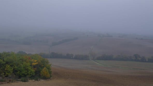 Thumbnail for Very Dense Mist over Autumn Fields
