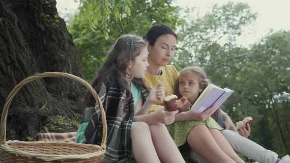 Porträt ziemlich Senior Frau sitzt auf der Decke unter dem Baum in der Park Lesen des Buches