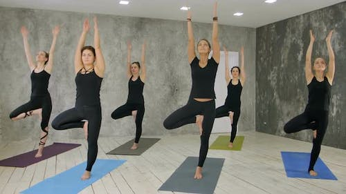 Fitness Class and Instructor Standing in Tree Pose at Exercise Studio