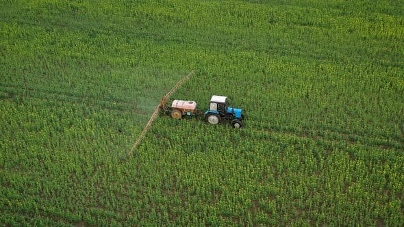 Thumbnail for Aerial View of Tractor Treats Agricultural Plants on the Field