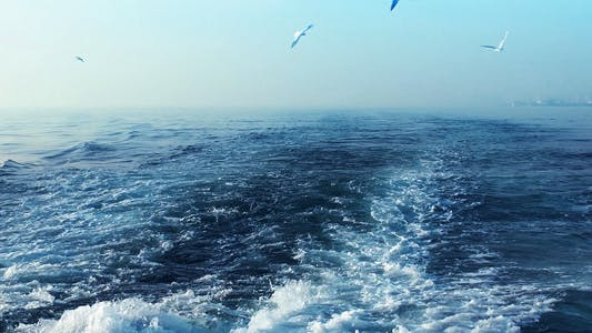 Thumbnail for The Sea 2