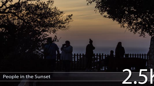Thumbnail for People in the Sunset