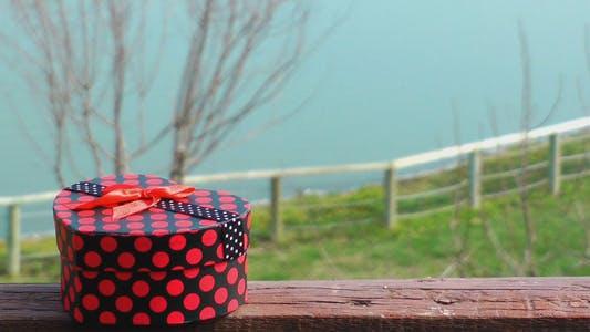 Thumbnail for Gift Box and Lake