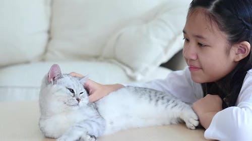Nettes asiatisches Kind spielt zusammen mit persischem Kätzchen