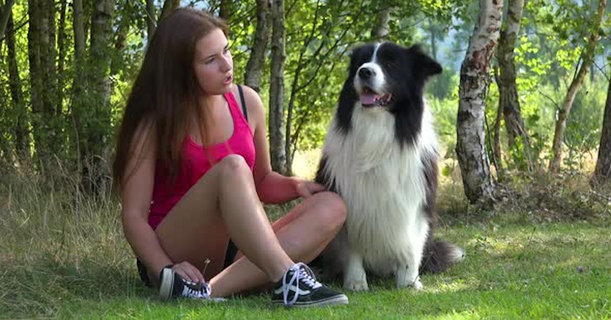 A Young Beautiful Woman and a Border Collie Sit in a Meadow, the Woman Pets and Talks To the Dog