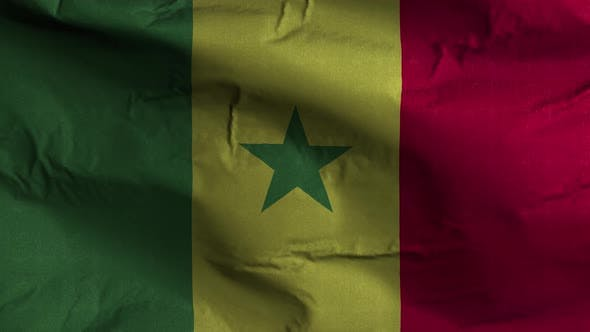 Senegal Flag Textured Waving Background 4K