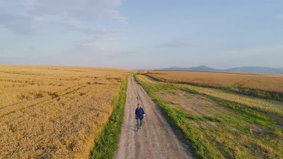 Thumbnail for Male Farm Researcher Standing on Dirt Road Amidst Fields