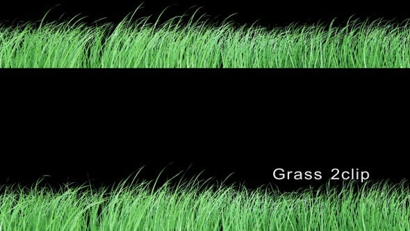 Thumbnail for Grass 2 Clip