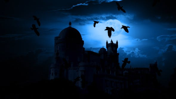 Thumbnail for Night Castle and Birds