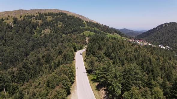 Flying Above Forest Road