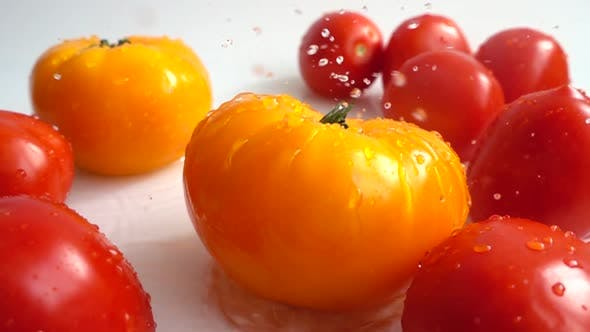Thumbnail for Fresh Juicy Tomatoes 12