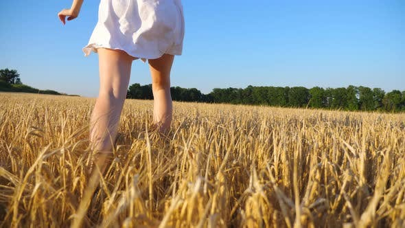 Thumbnail for Attractive Woman in White Dress Running Through Field with Yellow Ripe Wheat. Young Carefree Girl