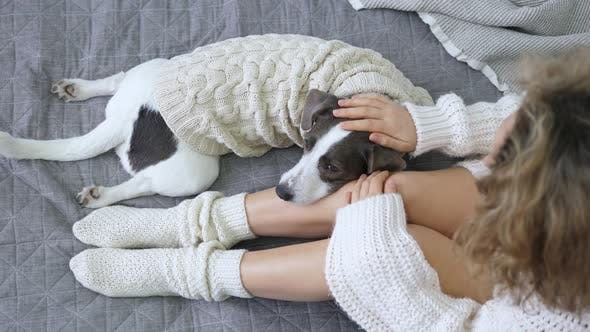 Thumbnail for Young Female Legs In Cozy Warm Socks Relaxing In Bed With Dog, Trendy Top View