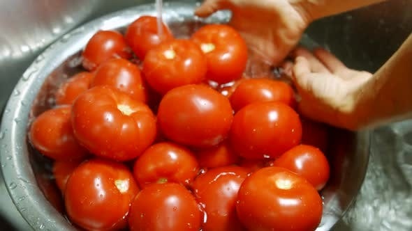Hands Washing Tomatoes in Basin.