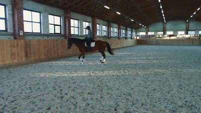 Woman Riding Horse Fast on Arena