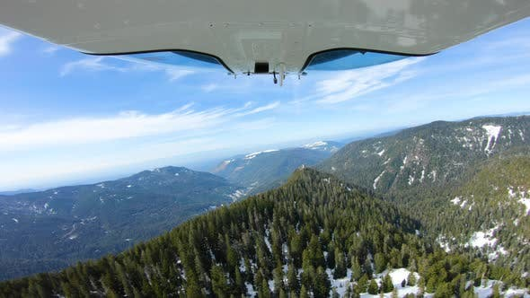 Cover Image for Fresh Snow In Cascade Mountain Forest Flying Aerial In Helicopter High Above Evergreen Trees