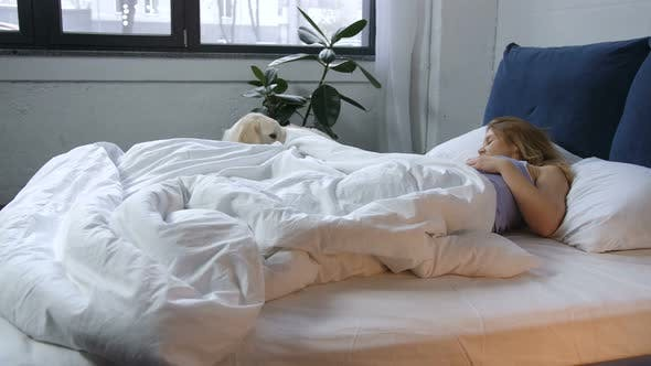 Thumbnail for Caring Friend Dog Awaking Woman Owner