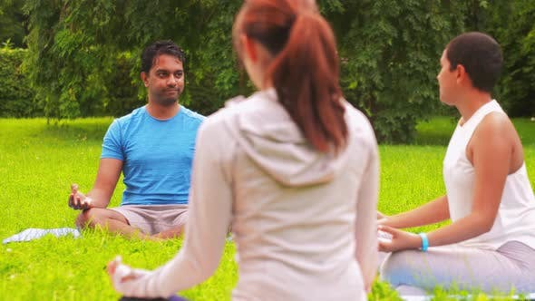 Thumbnail for Group of People Doing Yoga at Summer Park