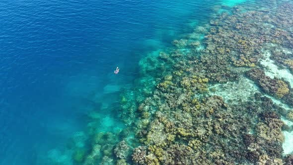 Aerial slow motion: woman snorkeling on coral reef tropical caribbean sea
