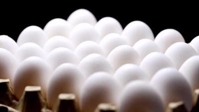 White chicken eggs. Chicken eggs in the container