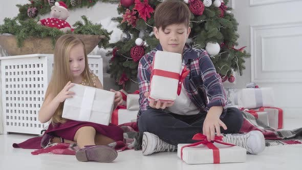 Thumbnail for Pretty Caucasian Girl and Boy Putting Presents Under Christmas Tree Indoors. Children Turning Back