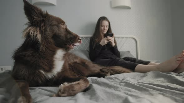 Woman Browsing Her Smartphone On Bed