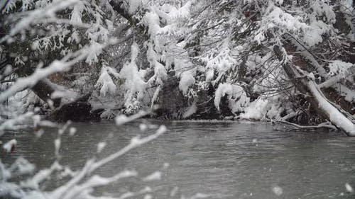 River Coast Covered with Snow