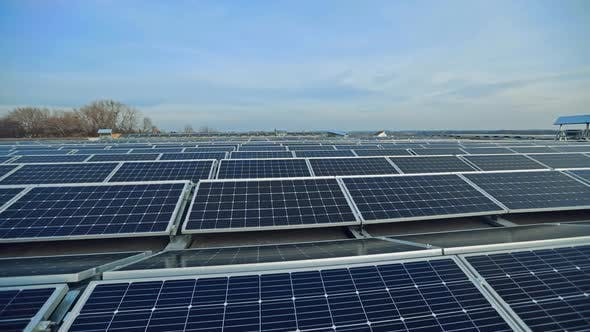 Thumbnail for Rows of Solar Panels in the Modern Farm.