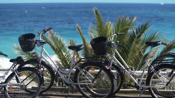 Cover Image for Bicycles for Family Trips During Vacation at Resort Town Active Recreation