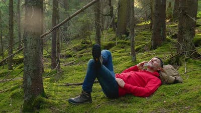 A Bearded Man Rests and Talks on the Phone in Theforest
