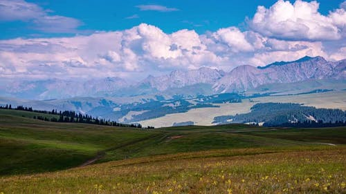 The landscape of grassland in Xinjiang, China