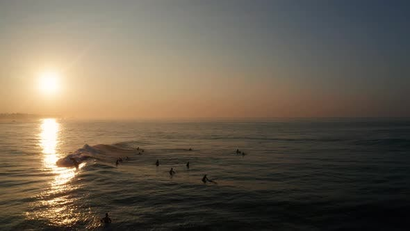 Cover Image for Sunrise on a Sandy Beach in the Southern Part of the Island of Sri Lanka. Surfers Ride on Their